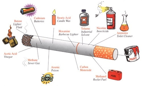 Cigarette Anatomy